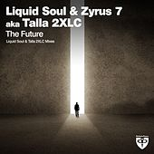 The Future by Liquid Soul