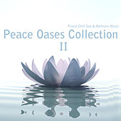 Peace Oases Collection (Finest Chill Spa & Wellness Music), Vol. 2 by Various Artists