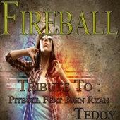 Fireball: Tribute to Pitbull, John Ryan by Teddy