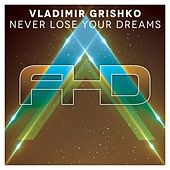 Never Lose Your Dreams by Vladimir Grishko