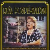 Ruža Pospiš Baldani by Ruža Pospiš Baldani