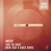 Took The Night (Amine Edge & DANCE Remix) by Chelley