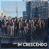 Som In Crescendo by In crescendo
