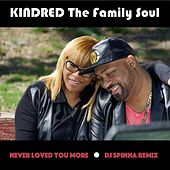 Never Loved You More (DJ Spinna Remix) by Kindred The Family Soul