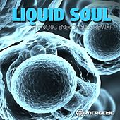 Hypnotic Energy (Sub6 & Freedom Fighters Remix) by Liquid Soul
