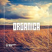 Organica #20 by Various Artists