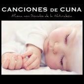 Canciones de Cuna Relajantes y para Bebes en el Vientre Materno - Musica con Sonidos de la Naturaleza by Canciones De Cuna