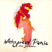 Free Somehow by Widespread Panic