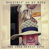 Somethin' On My Mind by The Mule Newman Band