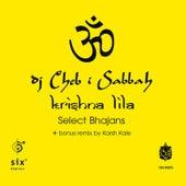 Krishna Lila - Select Bhajans - 12
