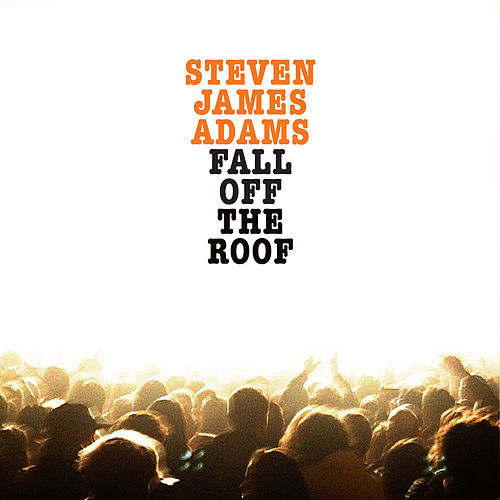 Fall Off the Roof by Steven James Adams