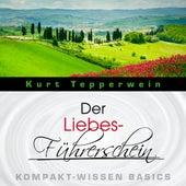 Der Liebes-Führerschein - Kompakt-Wissen Basics by Kurt Tepperwein
