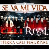 Se Va Mi Vida (feat. Rival) by Tierra Cali