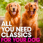 For Your Dog: All You Need Classics by Various Artists