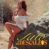 Puro Zacatecas by Lalo Y Los Descalzos