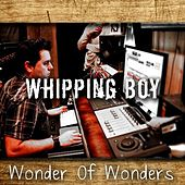 Wonder of Wonders (feat. Kimberlie Helton) by Whipping Boy