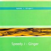 Ginger by Speedy J