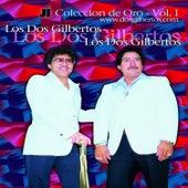 Coleccion de Oro Vol. 1 by Los Dos Gilbertos