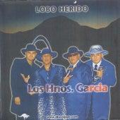 Lobo Herido by Los Garcia Bros.