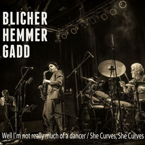 Well I'm Not Really Much of a Dancer/She Curves, She Curves (Live) - Single by Steve Gadd