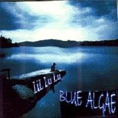 Blue Algae by LiL LuLu