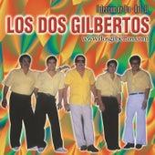 Coleccion de Oro Vol. 2 by Los Dos Gilbertos