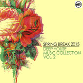 Spring Break 2015 Deep House Music Collection - Vol. 2 by Various Artists