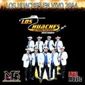 Los Huaches En Vivo 2014 by Los Huaches De Tierra Caliente