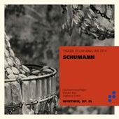 Schumann - Théâtre de l'Athénée Live 2014 by Alphonse Cemin