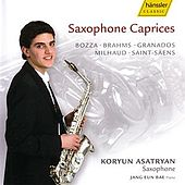 Saxaphone Caprices by Various Artists