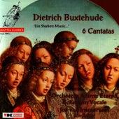 Buxtehude: 6 Cantatas by Dietrich Buxtehude