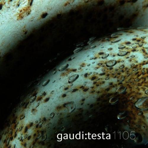 gaudi:testa 1105 - CONTINVVM by Gaudi