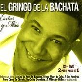 Éxitos y Más by El Gringo De La Bachata