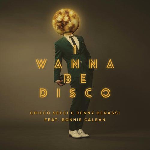 I Wanna Be Disco (Radio Edit) by Benny Benassi