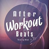 After Workout Beats, Vol. 1 (Perfect Recovery Chill House, Lounge and Chill out Tunes) by Various Artists