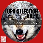 Lupa Selection, Vol. 6 (Top Producer Compilation) by Various Artists