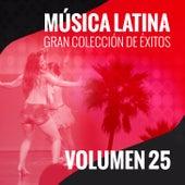 Música Latina (Gran Colección de Éxitos) (Volumen 25) by Various Artists