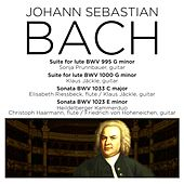 Bach: Suite for Lute, BWV 995, Fugue for Lute, BWV 1000, Sonatas BWV 1033 & 1023 by Various Artists