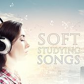 Study With Calm Music - The Playlist for Soft Studying Songs by Various Artists