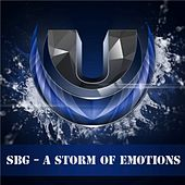 A Storm Of Emotions by Sbg