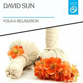 Yoga & Relaxation by David Sun