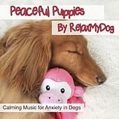 Peaceful Puppies - Calming Music for Anxiety by Relaxmydog