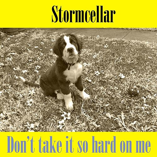 Don't Take It so Hard On Me by Stormcellar