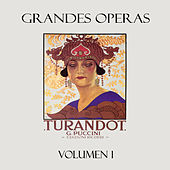 Puccini: Turandot, Vol. 1 by Various Artists