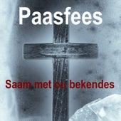 Paasfees Saam met ou Bekendes by Various Artists