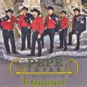 El Apapachado by Pepe Tovar Y Los Chacales