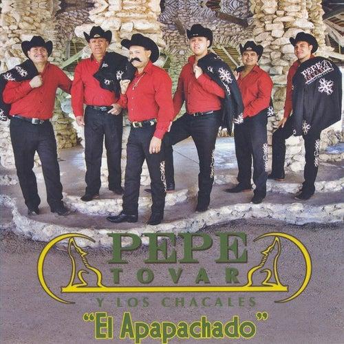 El Apapachado von Pepe Tovar Y Los Chacales