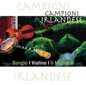 Campioni Irlandese - Bangio / Violino / Il Migliore by Various Artists