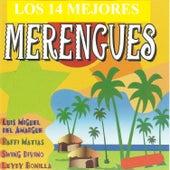 Los 14 Mejores Merengues by Various Artists