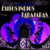 Éxitos Indios Tabajaras, Vol. 2 by Los Indios Tabajaras